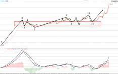 都业华-类二买-上海亚虹-11个交易日-涨幅54%