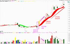 吴剑-见龙在田—中富通-17个交易日-涨幅30%