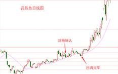 杨凯-回调完毕买入法-武昌鱼-28个交易日-涨幅74.82%