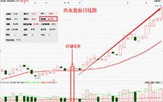 杨凯-回调完毕买入法-西水股份-24个交易日-涨幅69.35%
