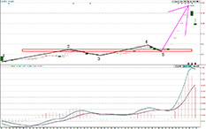 都业华-类二买-中化岩土-9个交易日-涨幅57%